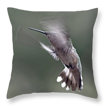 Hummingbird In The Country Throw Pillow