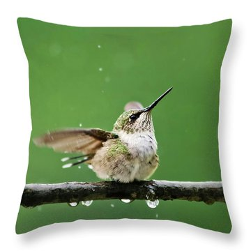 Hummingbird In The Rain Throw Pillow by Christina Rollo