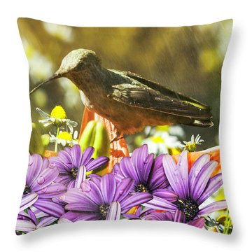 Hummingbird In The Spring Rain Throw Pillow by Diane Schuster