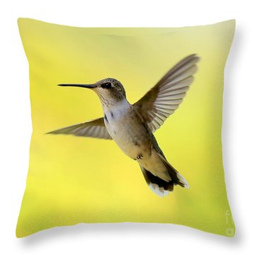 Hummingbird In Yellow Throw Pillow