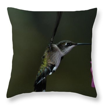Throw Pillow featuring the photograph Hummingbird by Mike Martin
