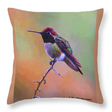 Hummingbird On A Stick Throw Pillow