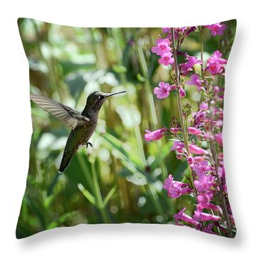 Hummingbird On Perry's Penstemon Throw Pillow