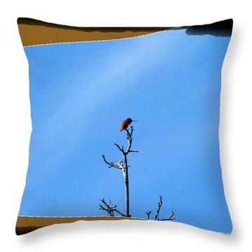 Hummingbird Optical Zoom Throw Pillow