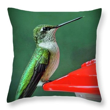 Hummingbird Portrait Throw Pillow