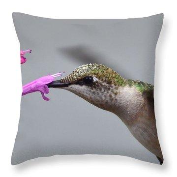 Hummingbird Profile Throw Pillow