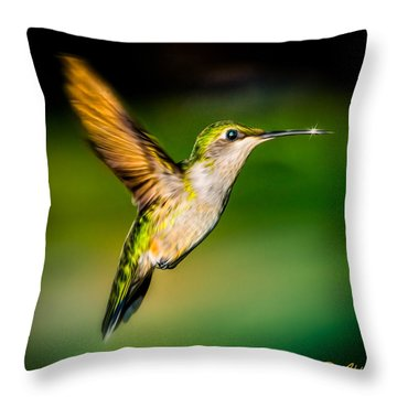 Hummingbird Sparkle Throw Pillow