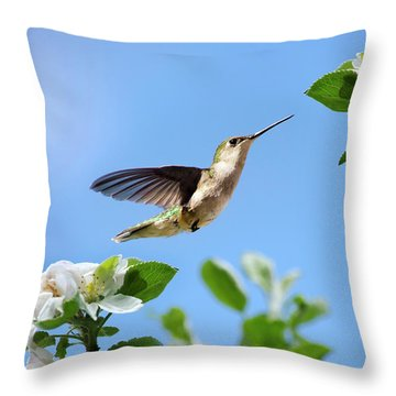 Hummingbird Springtime Throw Pillow by Christina Rollo