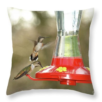 Hummingbird Trio Throw Pillow by Shari Nees