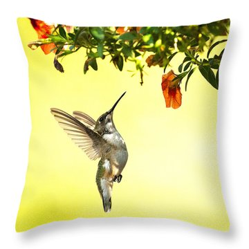 Hummingbird Under The Floral Canopy Throw Pillow