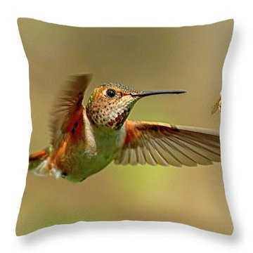 Hummingbird Vs. Bees Throw Pillow