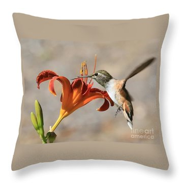 Hummingbird Whisper  Throw Pillow