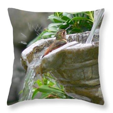 Rufous Hummingbird Throw Pillows