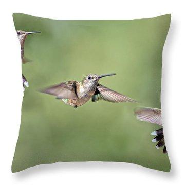 Hummingbirds The Girls Throw Pillow