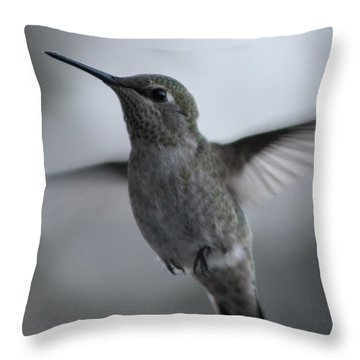 Hummm Throw Pillow by Cathie Douglas