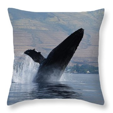 Humpback Whale Breach Throw Pillow by Jennifer Ancker