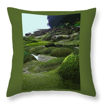 Humps And Bumps, Gabriola Shoreline Throw Pillow by Anne Havard