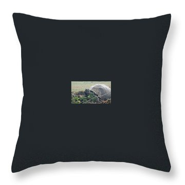 Hunger Giant Throw Pillow by Will Burlingham