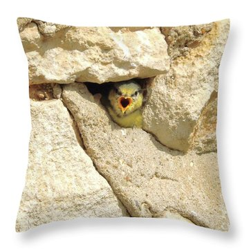 Hungry Chick Throw Pillow