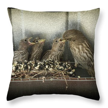 Throw Pillow featuring the photograph Hungry Chicks by Alan Toepfer