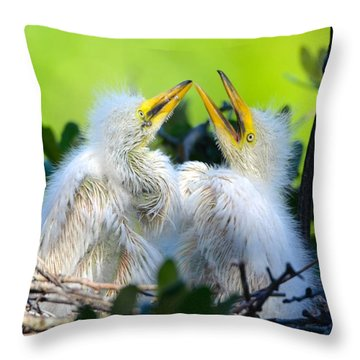 Hungry Egret Chicks Throw Pillow