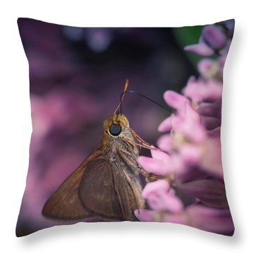 Hungry Moth Throw Pillow