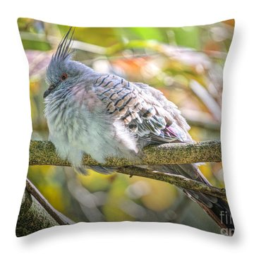 Hunkered Down Edition 2 Throw Pillow