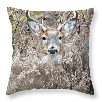 Hunters Dream Throw Pillow
