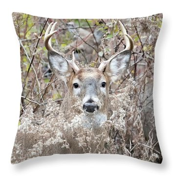 Hunters Dream Throw Pillow
