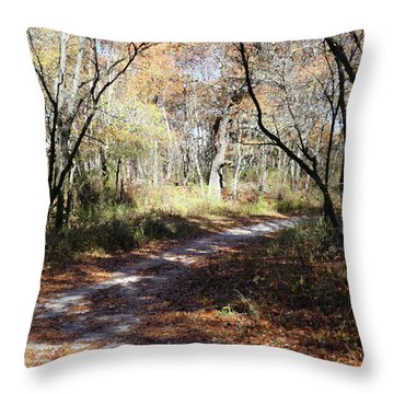 Hunter's Road Throw Pillow