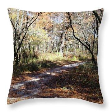 Hunter's Road Throw Pillow by Scott Kingery