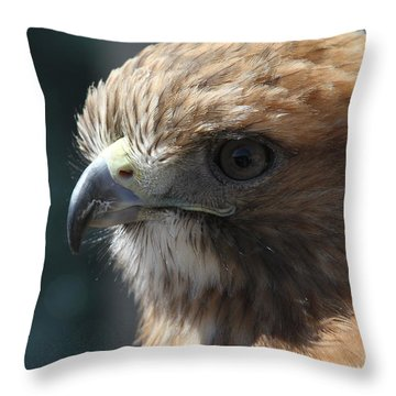 Throw Pillow featuring the photograph Hunter's Spirit by Laddie Halupa
