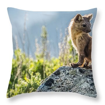 Throw Pillow featuring the photograph Hunting At Dusk by Yeates Photography