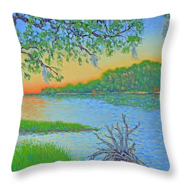 Throw Pillow featuring the painting Hunting Island Lagoon 2 by Dwain Ray