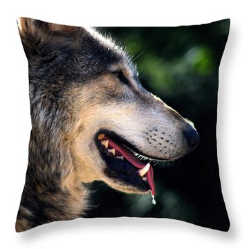 Hunting Wolf Throw Pillow