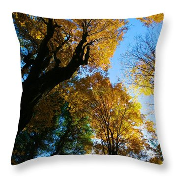 Huntington Clearstory Throw Pillow