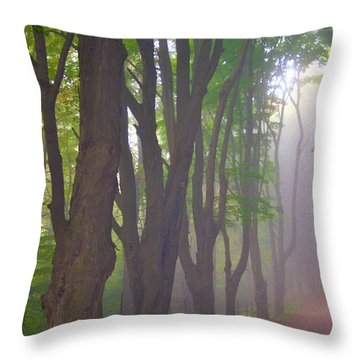 Huntington Mist  Throw Pillow