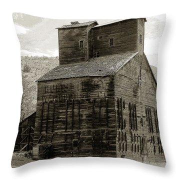 Hunts Ferry Barn Throw Pillow by David Lee Thompson