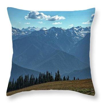 Hurricane Ridge Throw Pillow
