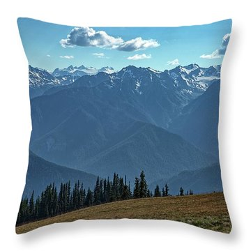 Hurricane Ridge Throw Pillow