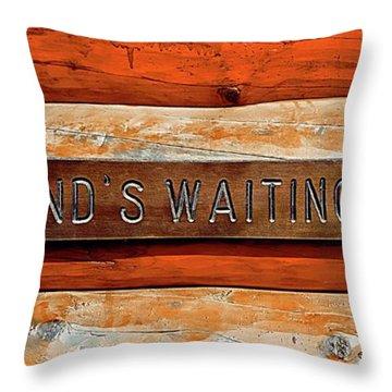 Throw Pillow featuring the photograph Husband's Waiting Bench - Denali National Park by Joseph Hendrix