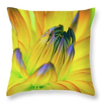 Husky Colors Throw Pillow