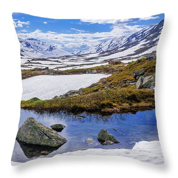 Throw Pillow featuring the photograph Hut In The Mountains by Dmytro Korol