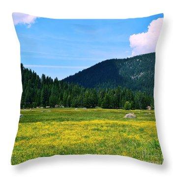Hwy 36 Tehema County Throw Pillow