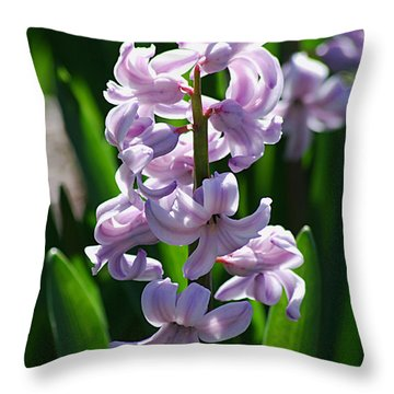 Throw Pillow featuring the photograph Hyacinth 20120402_127a by Tina Hopkins