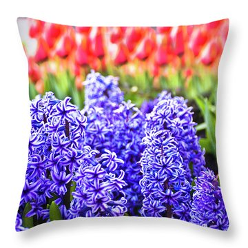 Hyacinth In Bloom Throw Pillow by Tamyra Ayles