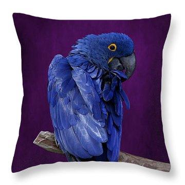 Hyacinth Macaw Panoramic Throw Pillow