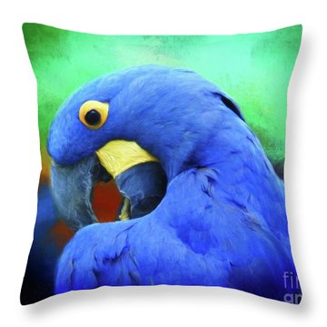 Hyacinth Mcaw Throw Pillow by Suzanne Handel