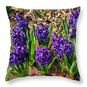 Throw Pillow featuring the photograph Hyacinth by Rick Friedle