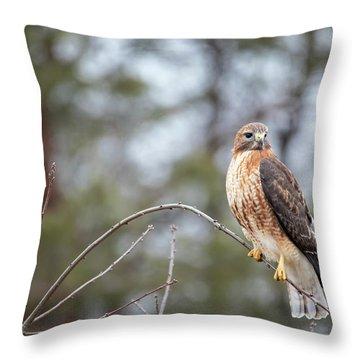Hybrid Branch Throw Pillow